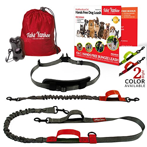 Hands Free Bungee Leash + Dual Dog Leash Coupler Kit Multifunctional + Retractable Traffic Jogging Hiking Leash & Reflective Pet Leash • Adjustable Body System + Padded Handles • Take Yankee (Stretch Elastic Roll Cross)
