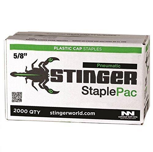 NATIONAL NAIL 136360 Stinger Cap Staple 5/8 in Leg, 20 Ga, 5/8'' by National Nail