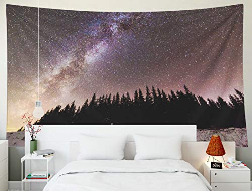 Fullentiart Dorm Tapestry, Wall Hanging 80x60inchWinter Mountains Night Landscape Panorama Milky Way Bright Constellation in Dark Blue Starry Decoration Room Birthday Gift Holiday Décor Tapestries - Way Panorama Milky