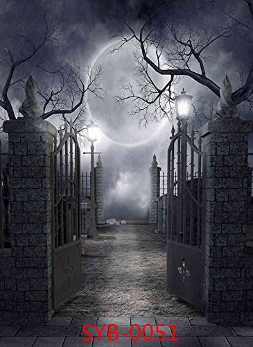 5X7ft Halloween Mysterious Door Horror Nights Moon Costume