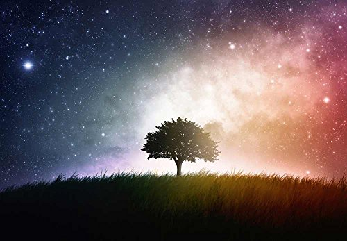A Lone Tree Sitting in a Field With a Background of a Multicolored Night Sky Wall Mural