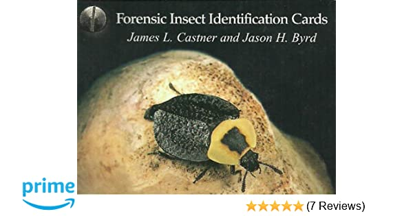 Forensic Insect Identification Cards: James L  Castner