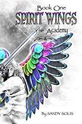 Spirit Wings the Academy: Book One