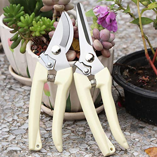 BUGUI Garden Pruning Shears