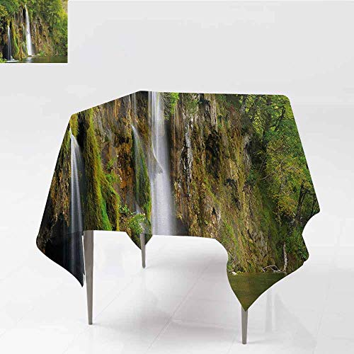 (DILITECK Washable Table Cloth Nature Majestic Waterfall Flowing Down to River in National Park Fresh Landscape Indoor Outdoor Camping Picnic W60 xL60 Green Brown)