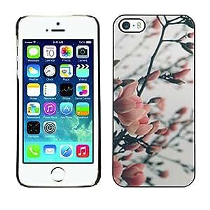 For Apple iPhone 5 / iPhone 5S Case , Tree Blossoming Garden Park - Diseño Patrón Teléfono Caso Cubierta Case Bumper Duro Protección Case Cover Funda