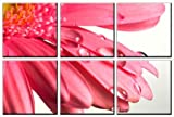 Pink flower print on canvas, framed and ready to hang, modern home and office floral interior decor, flower canvas designs, 6 panel print, wall art