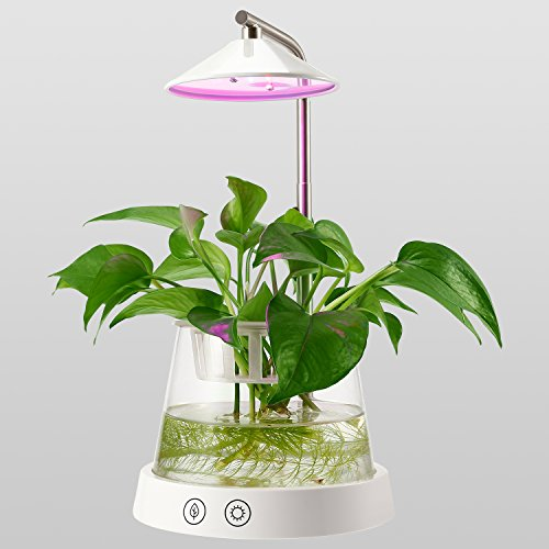 Grow Light Herb Garden Kit