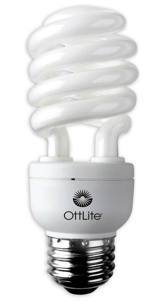 15 Watt HD Edison Swirl Screw Bulb - Set of 8