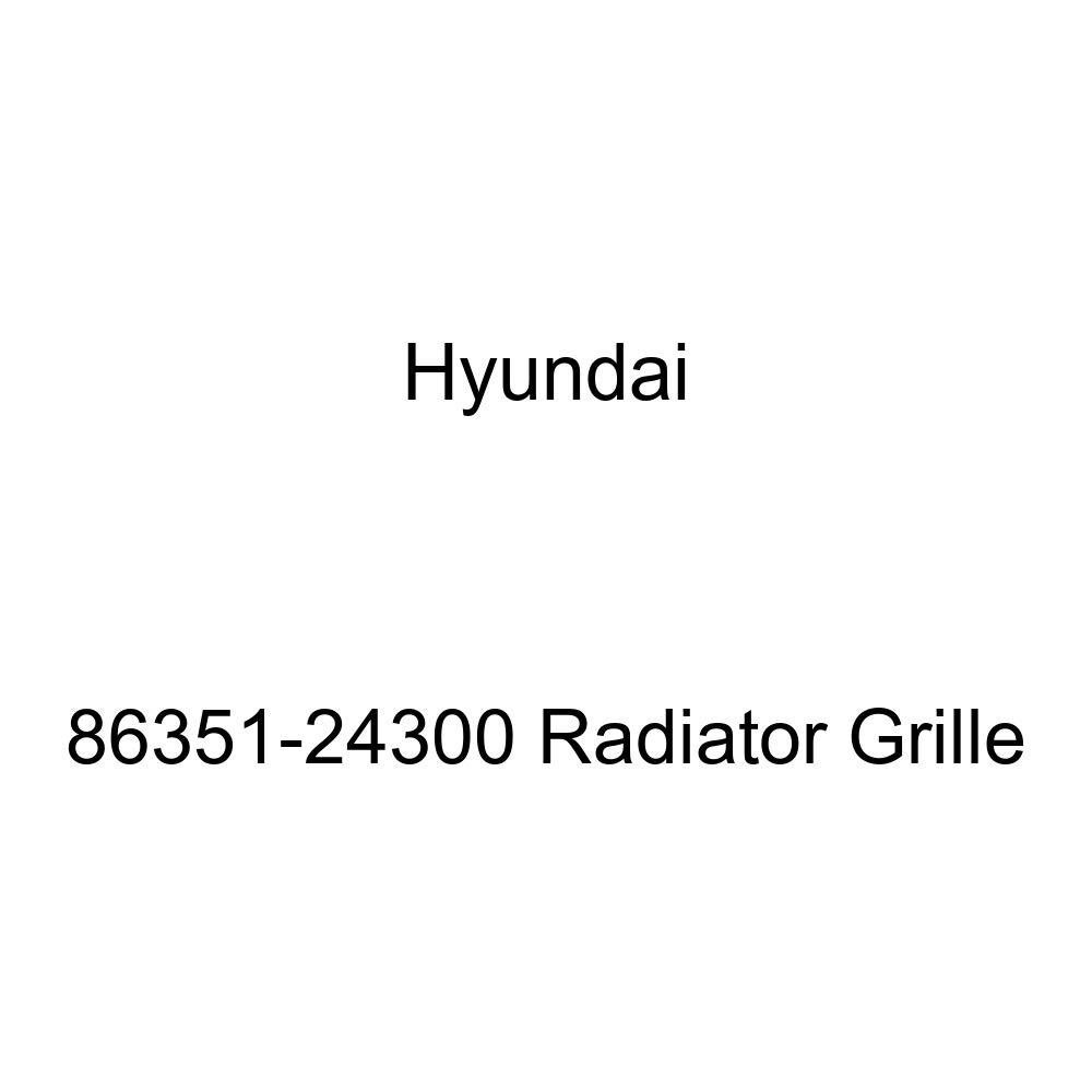 Genuine Hyundai 86351-24300 Radiator Grille