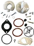 Briggs & Stratton 796184 Carburetor Overhaul Kit Replaces 698787 790032