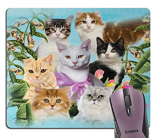 Knseva Cute House Cats Among Vintage Flowers Blooming Design Art Mouse Pad, Retro Floral Lovely Kitten Mouse Pads for Cat Lover ()