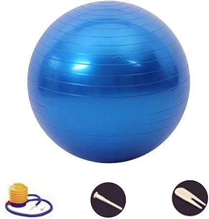 DAZISEN Pelota Fitness - Pelota de Ejercicio para Fitness (45-95 ...