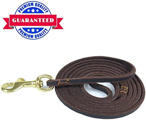 HiCaptain Leather Leash Durable Leashes product image