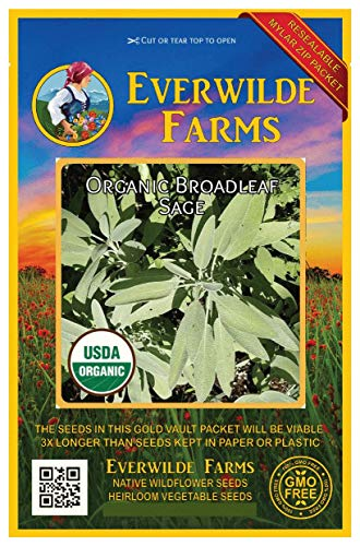 Everwilde Farms - 100 organic Broadleaf Sage Herb Seeds - Gold Vault - Sage Broadleaf