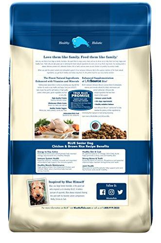 Buy senior dog food brands