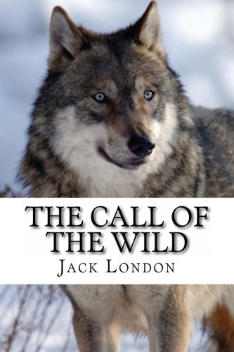 essay on the call of the wild by jack london The call of the wild response to literature essay throughout the call of the wild by jack london buck is a dog and he essay outline formatter 3000.