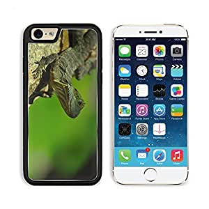 Eastern Water Dragon Lizard Reptile Cold-blooded 3DCom iPhone 6 Cover Premium Aluminium Design TPU Case Open Ports Customized Made to Order