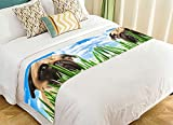 Custom Animal Bed Runner, Funny Puppy Pug in the Grass against the Sky Bed Runners And Scarves Bed Decoration 20x95 inch