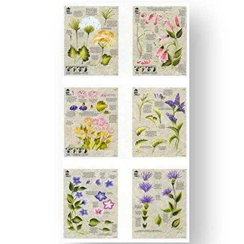 3pc Worksheet Pack 8-1/2 X12 -Wildflowers