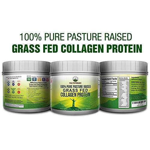 Pure Pasture Raised Grass Fed Hydrolyzed Collagen Protein by Peak Performance. Paleo Friendly, Gluten & Dairy Free Collagen Peptides (Unflavored Collagen) by Peak Performance Coffee (Image #1)