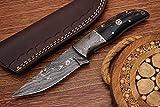 Damascuspro Custom Hand Made Damascus Steel Hunting Skinning Knife (HR-848)
