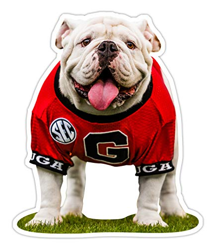 (UGA Georgia Bulldogs Sticker - UGA X Mascot Photo Decal - 4