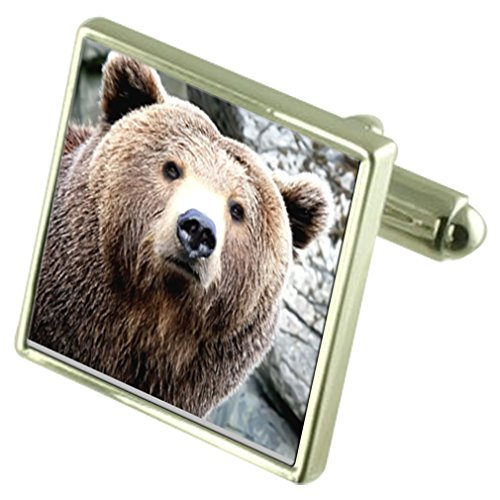 Select Gifts Wild Brown Bear Sterling Silver Cufflinks Optional Engraved Box (Square Brown Sterling Silver Cufflinks)