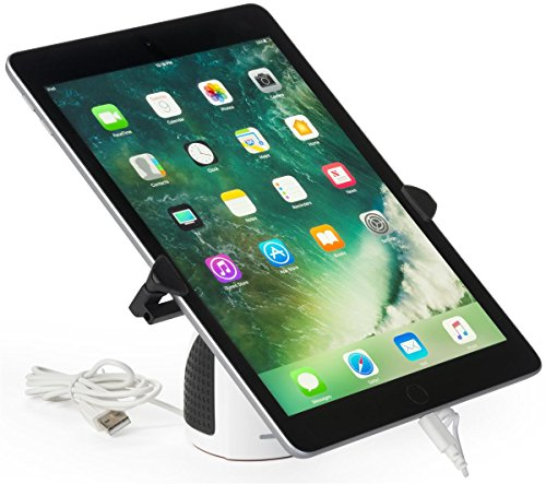 Displays2go, Security iPad Holder, Steel Wire and ABS Plastic Construction – White, Black (SCRSTNTB) by Displays2go