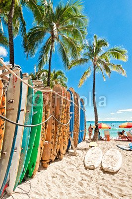 Tablas de surf in the Rack at Waikiki Beach (61845646), papel pintado,