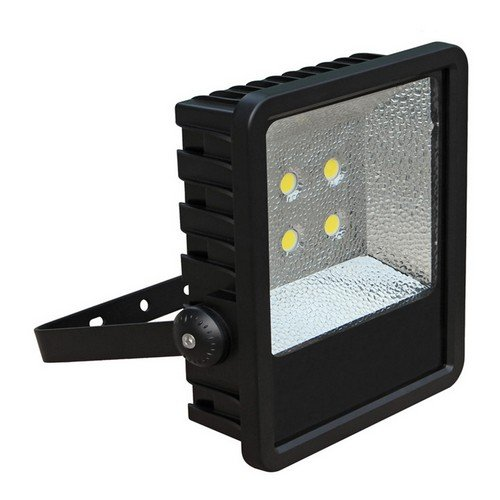 Morris 71380 LED Power Floodlight with Trunion, 120W, 10321 lm