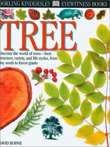 Eyewitness: Tree