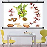 kitchen 67 brunch Gzhihine Wall Scroll Posterrealistic illustration of almond tree prunus dulcis with a brunch with flowers leaves and ,Wall Art Paiting on Canvas 67