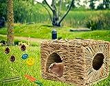 Bunny Grass House-Hand Made Edible Natural Grass