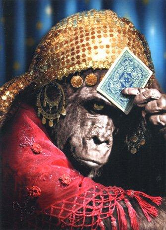 (Chimp Fortune Teller Birthday Card)