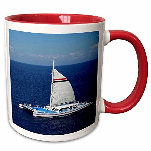 Cozumel 5 Light (3dRose Florene Cruise Ships Sites - Image Of Catamaran Sailboat Near Cozumel - 11oz Two-Tone Red Mug (mug_253705_5))