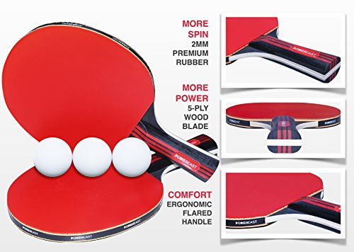 Review Ping Pong Paddle Set