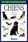 Les chiens par Alderton