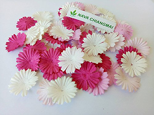 Tone Daisy Flower (NAVA CHIANGMAI 100 Pink Color Tone mulberry Paper Daisy Flowers Scrapbooking Embellishment Handmade)