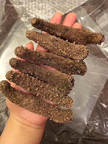 Alaska Red Dried Sea Cucumber-natural Sun Dried(Medium)1lb, Grade AAA by Dorothy27