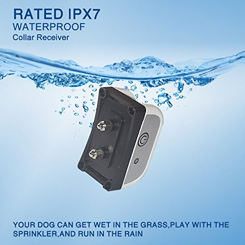 JUSTPET Wireless Dog Fence Pet Containment System, Safe Effective Anti Over Shock Collar, Adjustable Control Range 900 Feet & Display Distance, Rechargeable Waterproof Collar Receiver (2 Dog System) by JUSTPET (Image #4)