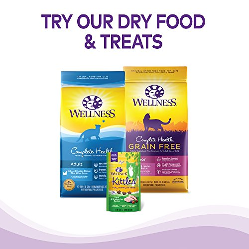 Wellness Natural Grain-Free Wet Canned Cat Food, Turkey Pate, 12.5-Ounce Can (Pack Of 12)