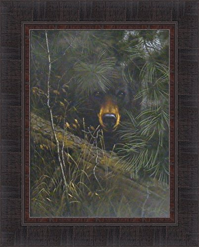 The Watcher by Derk Hansen 17x21 Black Bear Hiding In Pine Trees Framed Art Print Wall Décor Picture