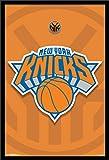 Trends International New York Knicks Logo Wall Poster 22.375' x 34'