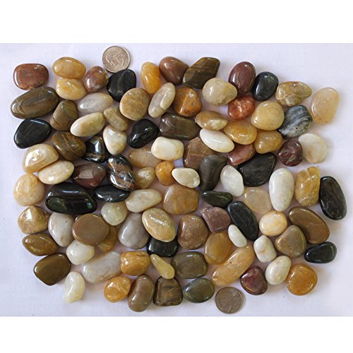 Decorative High Polished Gravel,pebble river rocks mixed, 20lbs, 3/8~3/4 Inch by JCSTONE