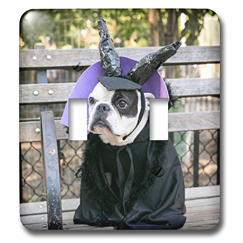 Danita Delimont - Halloween - New York City. Pet Halloween contest at Thompkins Square Park. - Light Switch Covers - double toggle switch (Halloween Costume Photo Contest)