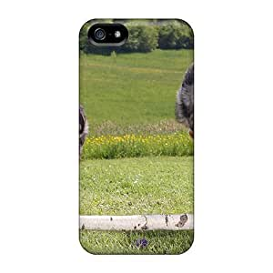 New Shockproof Protection Case Cover For Iphone 5/5s/ Australians Sheperd Case Cover