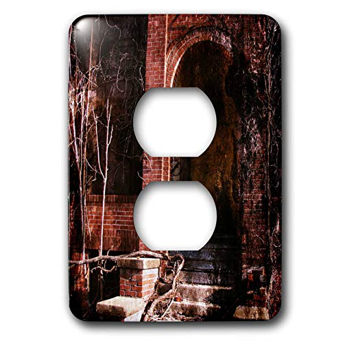 3dRose Cassie Peters Abandoned - A Door To the Abandoned Calendar Factory - Light Switch Covers - 2 plug outlet cover (lsp_288432_6) by 3dRose