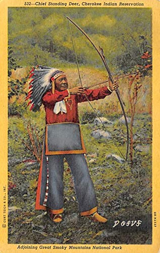 Indian Post Card Chief Standing Dear, Cherokee Indian Reservation Great Smoky Mountains National Park, USA Postcard Unused