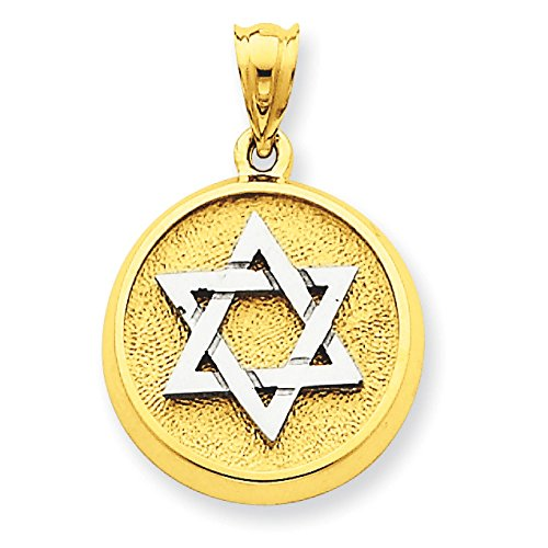 14k White & Yellow Gold Star of David in Circle Charm Pendant - 27mm from Glamerous Gold